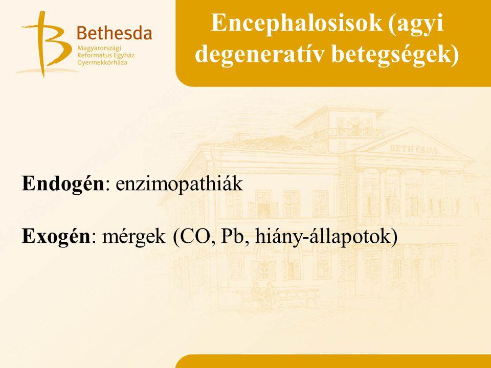 Encephalosisok (agyi degeneratív betegségek) Endogén: enzimopathiák Exogén: mérgek (CO, Pb, hiány-állapotok)