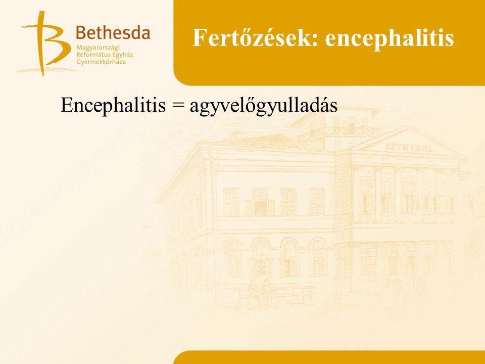 Fertőzések: encephalitis Encephalitis = agyvelőgyulladás