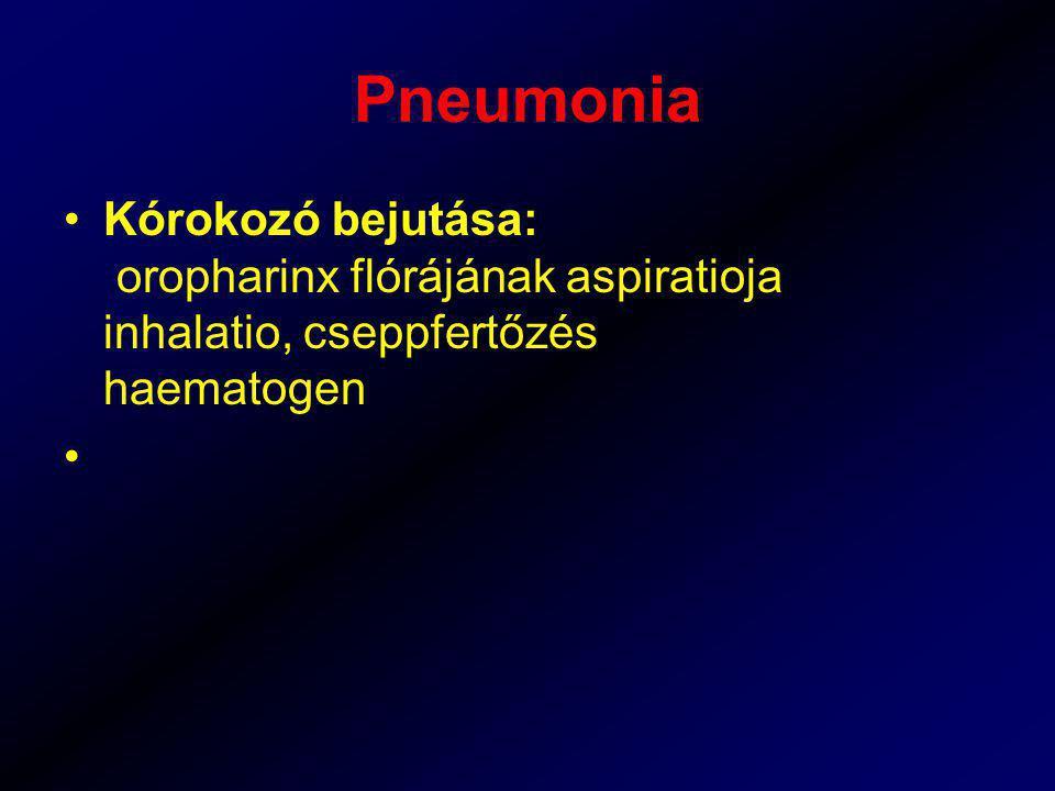Pneumonia Kórokozó bejutása: oropharinx flórájának aspiratioja inhalatio, cseppfertőzés haematogen