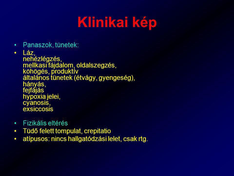 Klinikai kép Panaszok, tünetek: Láz, nehézlégzés, mellkasi fájdalom, oldalszegzés, köhögés, produktív általános tünetek (étvágy, gyengeség), hányás, f