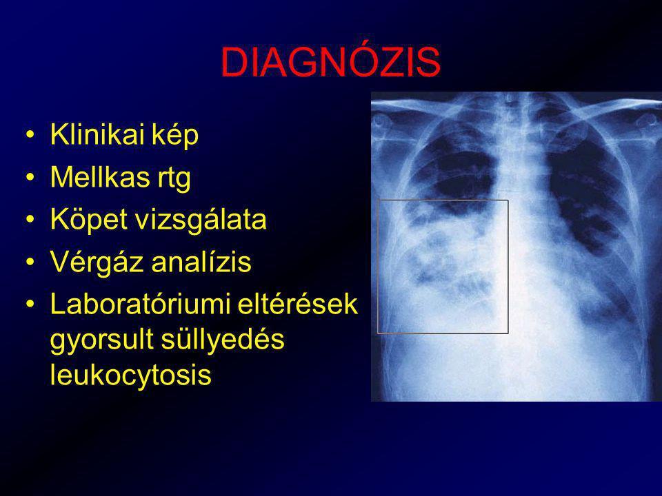 DIAGNÓZIS Klinikai kép Mellkas rtg Köpet vizsgálata Vérgáz analízis Laboratóriumi eltérések gyorsult süllyedés leukocytosis