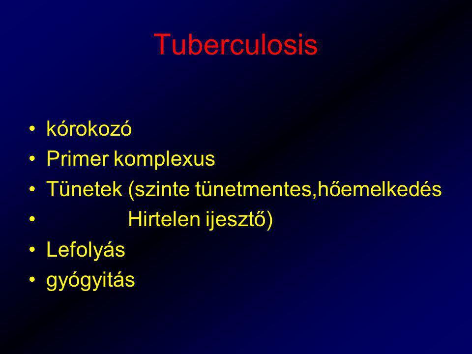 Tuberculosis kórokozó Primer komplexus Tünetek (szinte tünetmentes,hőemelkedés Hirtelen ijesztő) Lefolyás gyógyitás