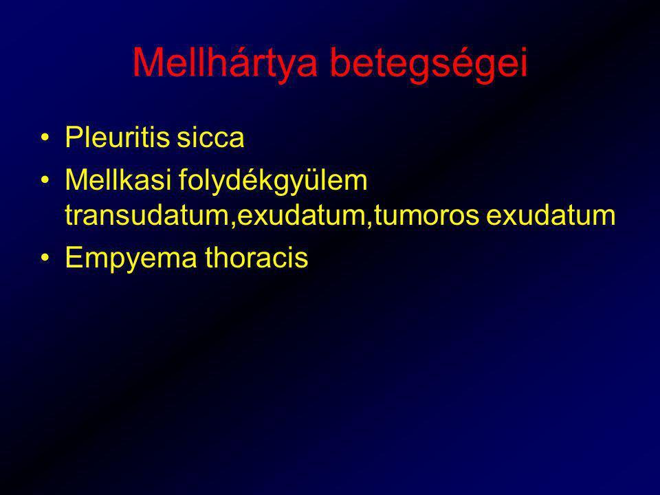 Mellhártya betegségei Pleuritis sicca Mellkasi folydékgyülem transudatum,exudatum,tumoros exudatum Empyema thoracis