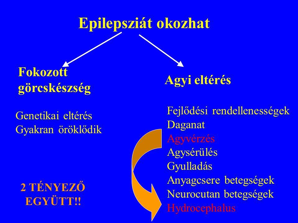 Epilepsziát okozhat Fokozott görcskészség Agyi eltérés Genetikai eltérés Gyakran öröklődik Fejlődési rendellenességek Daganat Agyvérzés Agysérülés Gyulladás Anyagcsere betegségek Neurocutan betegségek Hydrocephalus 2 TÉNYEZŐ EGYÜTT!!