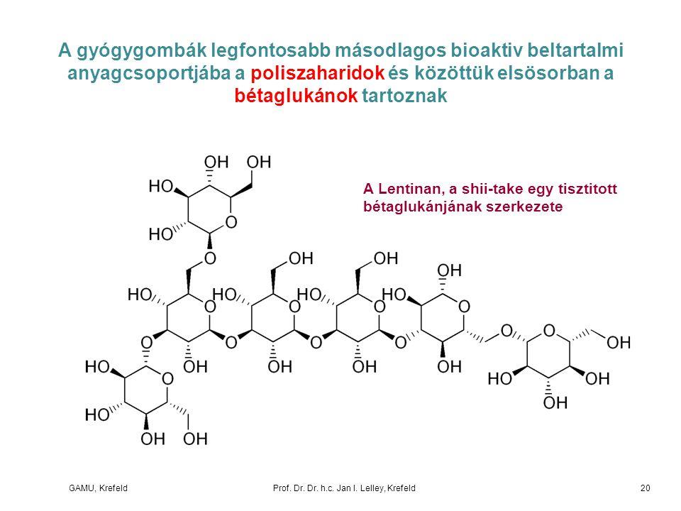 GAMU, KrefeldProf. Dr. Dr. h.c. Jan I. Lelley, Krefeld A gyógygombák legfontosabb másodlagos bioaktiv beltartalmi anyagcsoportjába a poliszaharidok és