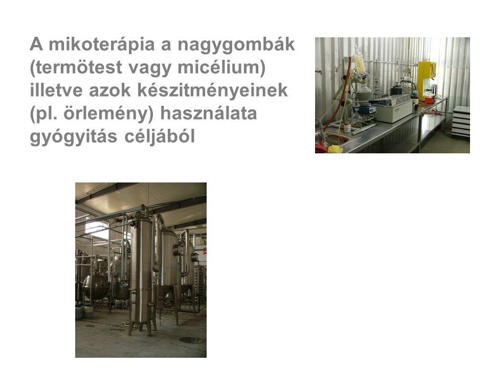 A mikoterápia a nagygombák (termötest vagy micélium) illetve azok készitményeinek (pl. örlemény) használata gyógyitás céljából