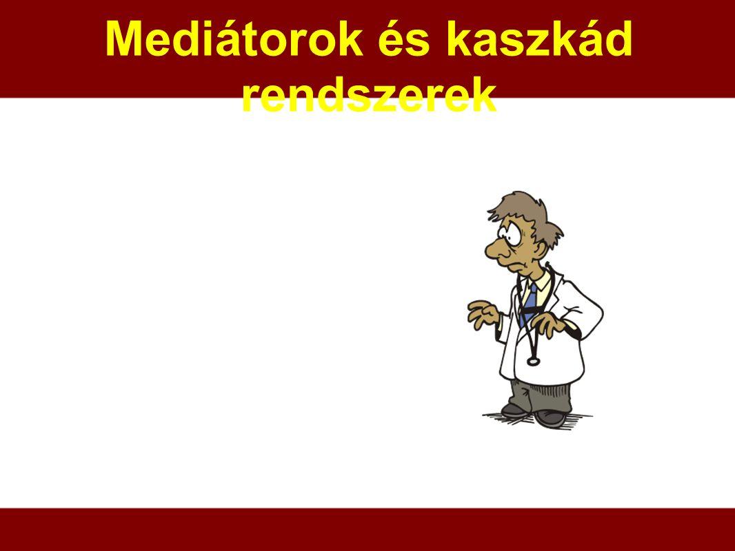 Mediátorok és kaszkád rendszerek