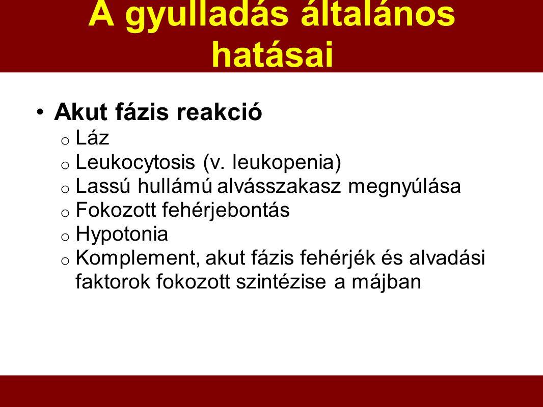 A gyulladás általános hatásai Akut fázis reakció o Láz o Leukocytosis (v. leukopenia) o Lassú hullámú alvásszakasz megnyúlása o Fokozott fehérjebontás