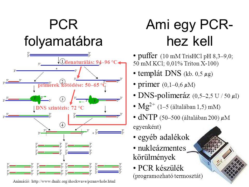 puffer (10 mM TrisHCl pH 8,3–9,0; 50 mM KCl; 0,01% Triton X-100) templát DNS (kb. 0,5  g) primer (0,1–0,6  M) DNS-polimeráz (0,5–2,5 U / 50  l) Mg