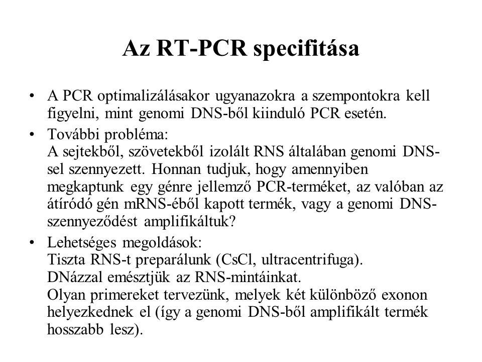 Az RT-PCR specifitása A PCR optimalizálásakor ugyanazokra a szempontokra kell figyelni, mint genomi DNS-ből kiinduló PCR esetén. További probléma: A s