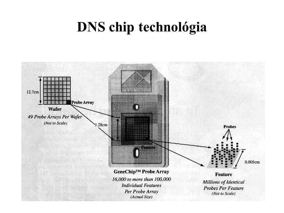 DNS chip technológia