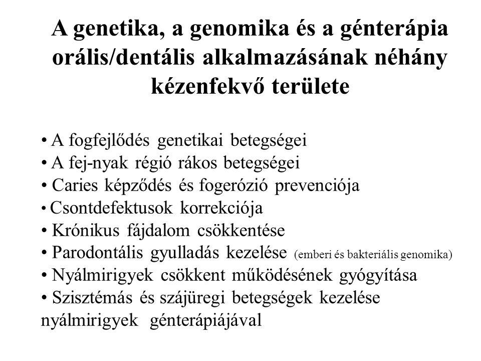 A genetika, a genomika és a génterápia orális/dentális alkalmazásának néhány kézenfekvő területe A fogfejlődés genetikai betegségei A fej-nyak régió rákos betegségei Caries képződés és fogerózió prevenciója Csontdefektusok korrekciója Krónikus fájdalom csökkentése Parodontális gyulladás kezelése (emberi és bakteriális genomika) Nyálmirigyek csökkent működésének gyógyítása Szisztémás és szájüregi betegségek kezelése nyálmirigyek génterápiájával
