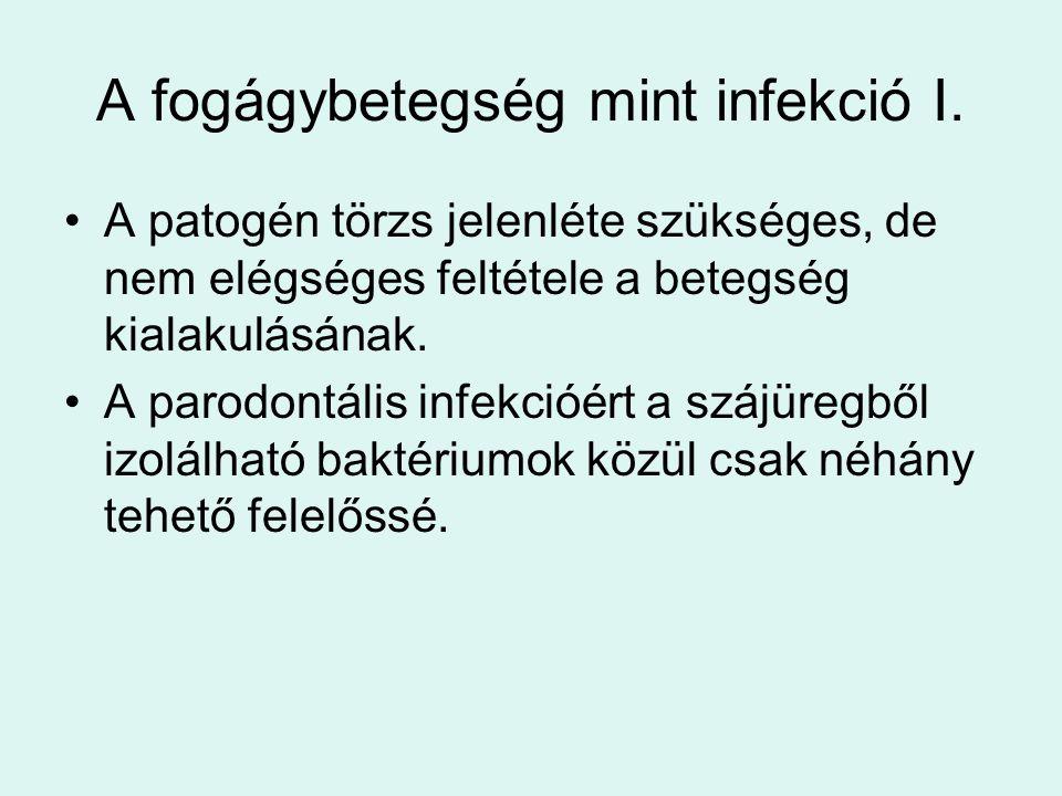 A fogágybetegség mint infekció I.