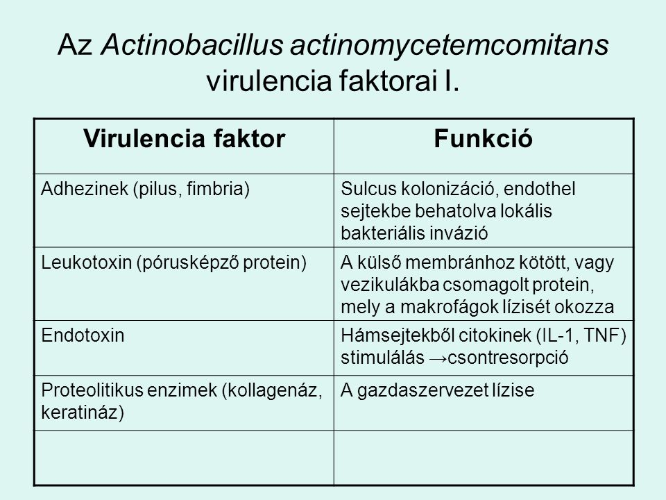 Az Actinobacillus actinomycetemcomitans virulencia faktorai I.
