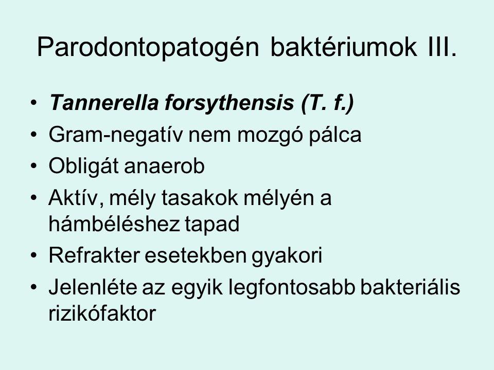 Parodontopatogén baktériumok III.Tannerella forsythensis (T.