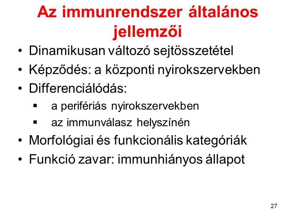27 Az immunrendszer általános jellemzői Dinamikusan változó sejtösszetétel Képződés: a központi nyirokszervekben Differenciálódás:  a perifériás nyir