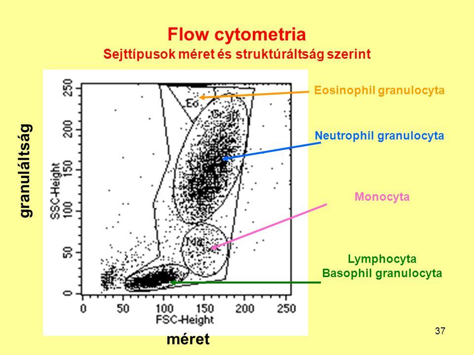 37 Flow cytometria Sejttípusok méret és struktúráltság szerint Lymphocyta Basophil granulocyta Monocyta Neutrophil granulocyta Eosinophil granulocyta