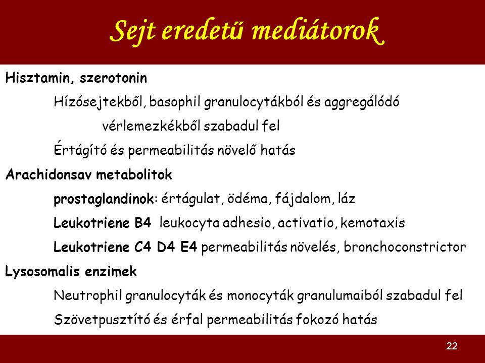 22 Sejt eredet ű mediátorok Hisztamin, szerotonin Hízósejtekből, basophil granulocytákból és aggregálódó vérlemezkékből szabadul fel Értágító és permeabilitás növelő hatás Arachidonsav metabolitok prostaglandinok: értágulat, ödéma, fájdalom, láz Leukotriene B4 leukocyta adhesio, activatio, kemotaxis Leukotriene C4 D4 E4 permeabilitás növelés, bronchoconstrictor Lysosomalis enzimek Neutrophil granulocyták és monocyták granulumaiból szabadul fel Szövetpusztító és érfal permeabilitás fokozó hatás
