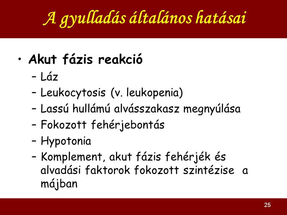 25 A gyulladás általános hatásai Akut fázis reakció –Láz –Leukocytosis (v. leukopenia) –Lassú hullámú alvásszakasz megnyúlása –Fokozott fehérjebontás