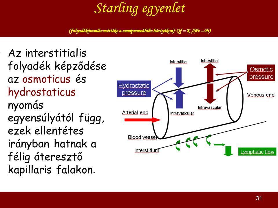 31 Starling egyenlet (folyadékáramlás mértéke a semipermeábilis hártyákon): Qf = K /(Pc – Pi) Az interstitialis folyadék képződése az osmoticus és hydrostaticus nyomás egyensúlyától függ, ezek ellentétes irányban hatnak a félig áteresztő kapillaris falakon.