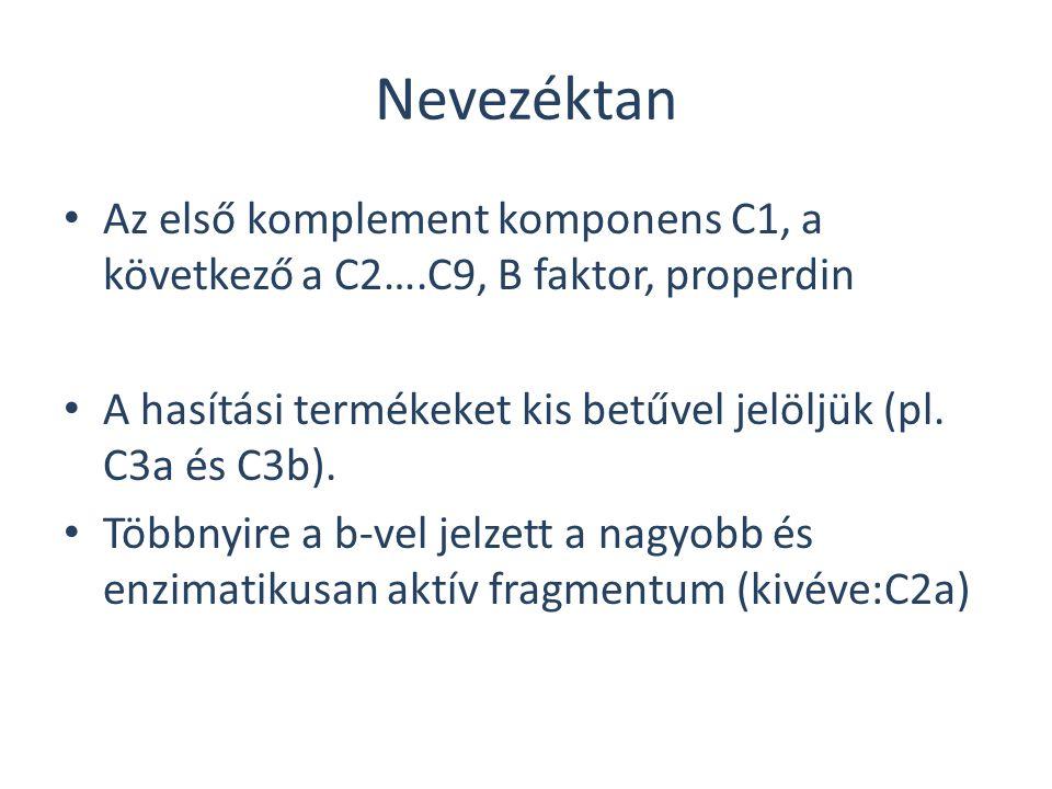 Nevezéktan Az első komplement komponens C1, a következő a C2….C9, B faktor, properdin A hasítási termékeket kis betűvel jelöljük (pl. C3a és C3b). Töb