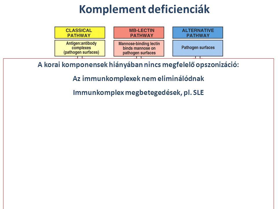 A korai komponensek hiányában nincs megfelelő opszonizáció: Az immunkomplexek nem eliminálódnak Immunkomplex megbetegedések, pl. SLE Komplement defici