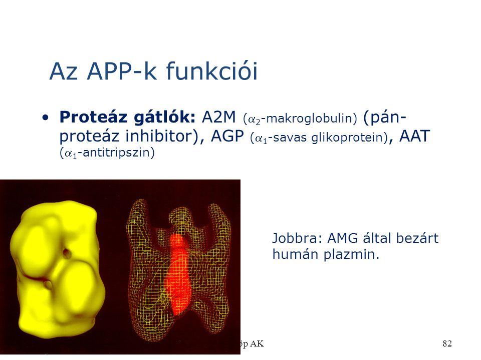 ©Fülöp AK82 Proteáz gátlók: A2M ( 2 -makroglobulin) (pán- proteáz inhibitor), AGP ( 1 -savas glikoprotein), AAT ( 1 -antitripszin) Az APP-k funkció