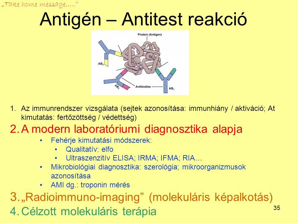 35 Antigén – Antitest reakció 1.Az immunrendszer vizsgálata (sejtek azonosítása: immunhiány / aktiváció; At kimutatás: fertőzöttség / védettség) 2.A m