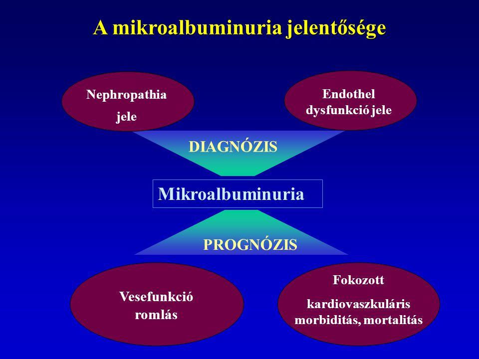 A mikroalbuminuria jelentősége Nephropathia jele Endothel dysfunkció jele Fokozott kardiovaszkuláris morbiditás, mortalitás Vesefunkció romlás Mikroalbuminuria DIAGNÓZIS PROGNÓZIS