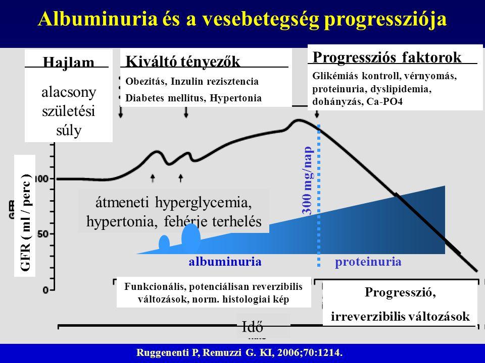 Ruggenenti P, Remuzzi G. KI, 2006;70:1214. albuminuria 300 mg/nap Albuminuria és a vesebetegség progressziója Funkcionális, potenciálisan reverzibilis
