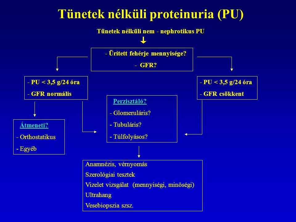 Tünetek nélküli proteinuria (PU) Tünetek nélküli nem - nephrotikus PU Tünetek nélküli nem - nephrotikus PU - Ürített fehérje mennyisége.