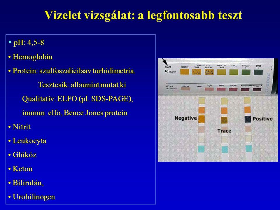 Vizelet vizsgálat: a legfontosabb teszt pH: 4,5-8 Hemoglobin Protein: szulfoszalicilsav turbidimetria. Tesztcsík: albumint mutat ki Qualitatív: ELFO (
