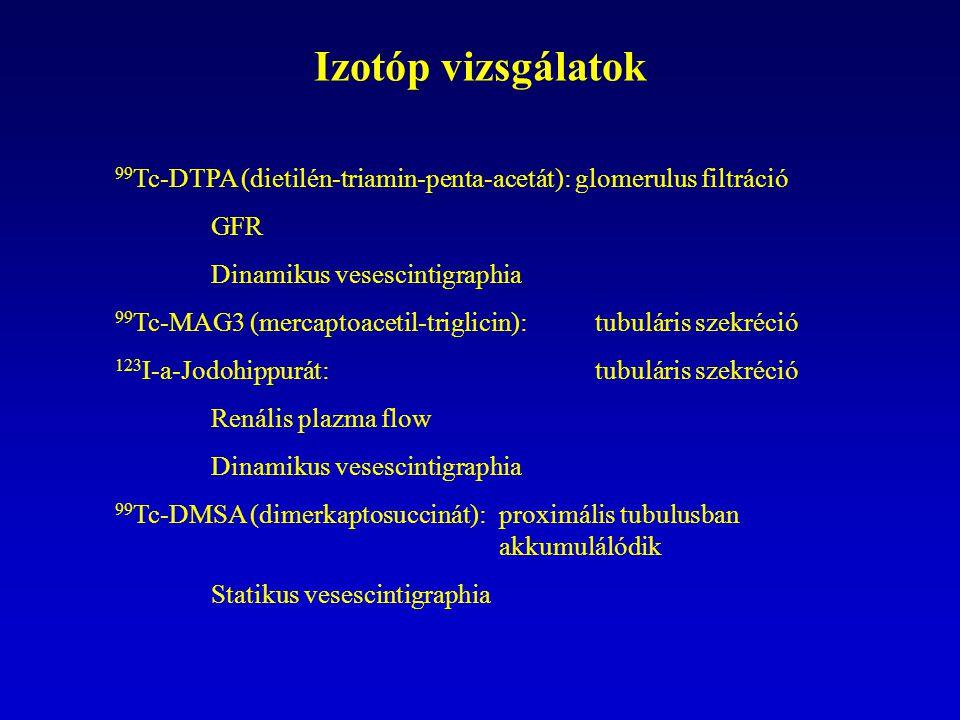 Izotóp vizsgálatok 99 Tc-DTPA (dietilén-triamin-penta-acetát): glomerulus filtráció GFR Dinamikus vesescintigraphia 99 Tc-MAG3 (mercaptoacetil-triglicin): tubuláris szekréció 123 I-a-Jodohippurát: tubuláris szekréció Renális plazma flow Dinamikus vesescintigraphia 99 Tc-DMSA (dimerkaptosuccinát): proximális tubulusban akkumulálódik Statikus vesescintigraphia