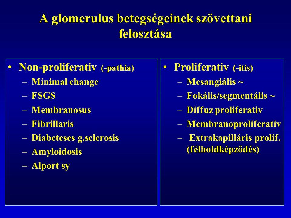 A glomerulus betegségeinek szövettani felosztása Non-proliferativ (-pathia) –Minimal change –FSGS –Membranosus –Fibrillaris –Diabeteses g.sclerosis –Amyloidosis –Alport sy Proliferativ (-itis) –Mesangiális ~ –Fokális/segmentális ~ –Diffuz proliferativ –Membranoproliferativ – Extrakapilláris prolif.