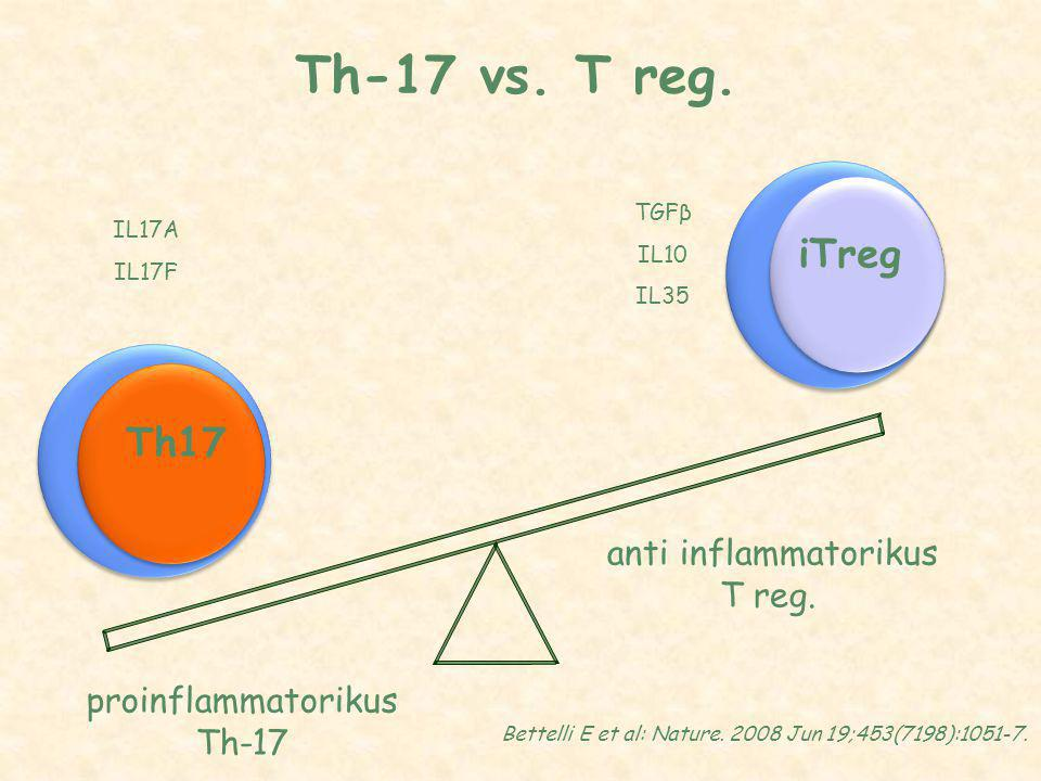 Th-17 vs. T reg. proinflammatorikus Th-17 anti inflammatorikus T reg.