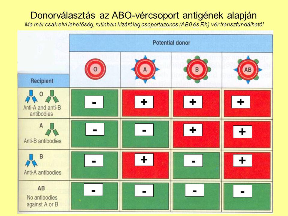 45 Donorválasztás az ABO-vércsoport antigének alapján Ma már csak elvi lehetőség, rutinban kizárólag csoportazonos (AB0 és Rh) vér transzfundálható! -