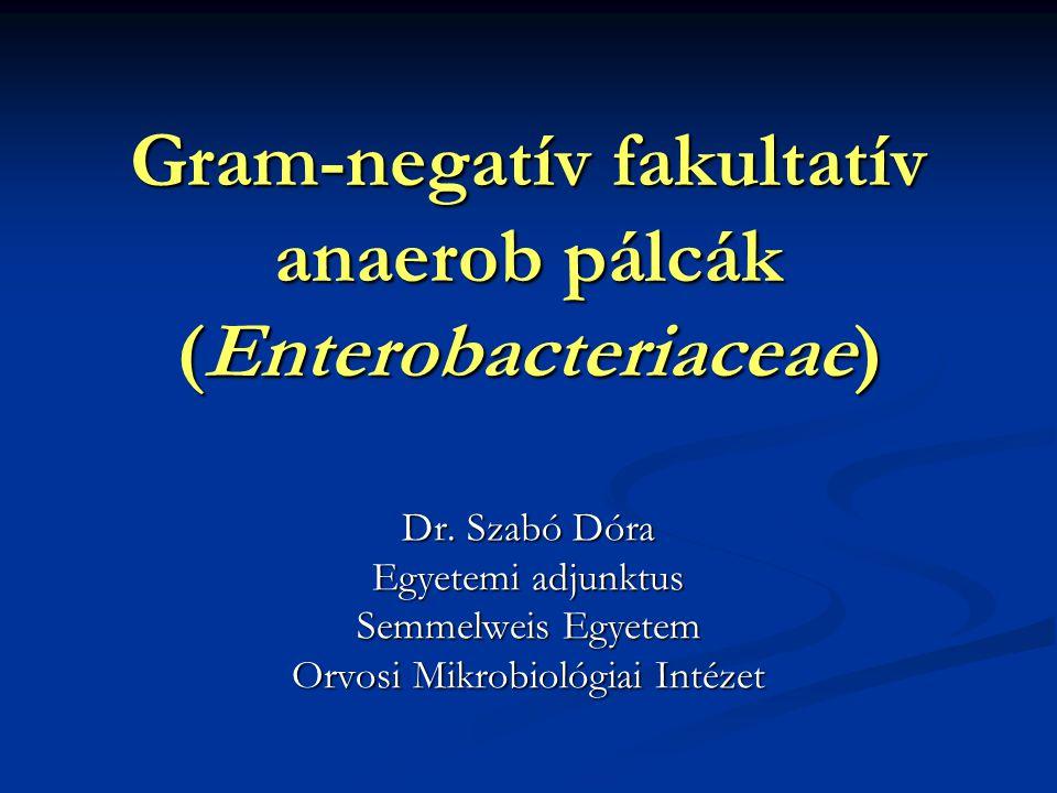 Gram-negatív fakultatív anaerob pálcák (Enterobacteriaceae) Dr. Szabó Dóra Egyetemi adjunktus Semmelweis Egyetem Orvosi Mikrobiológiai Intézet