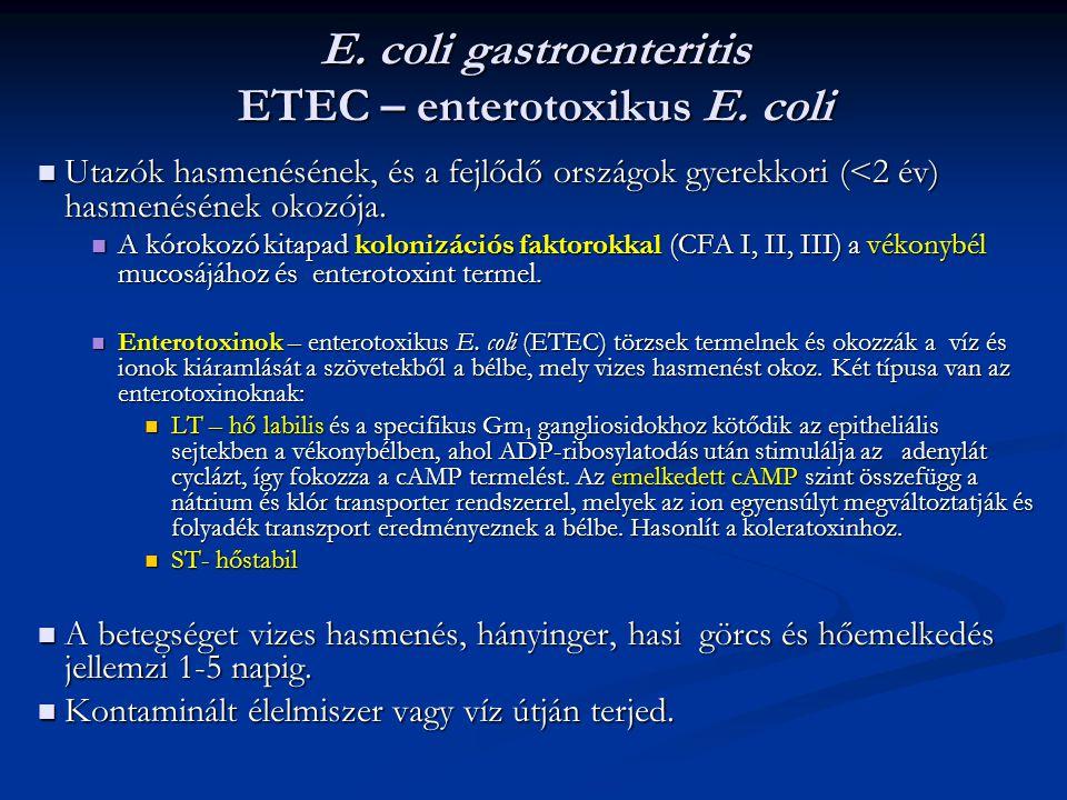 E. coli gastroenteritis ETEC – enterotoxikus E. coli Utazók hasmenésének, és a fejlődő országok gyerekkori (<2 év) hasmenésének okozója. Utazók hasmen