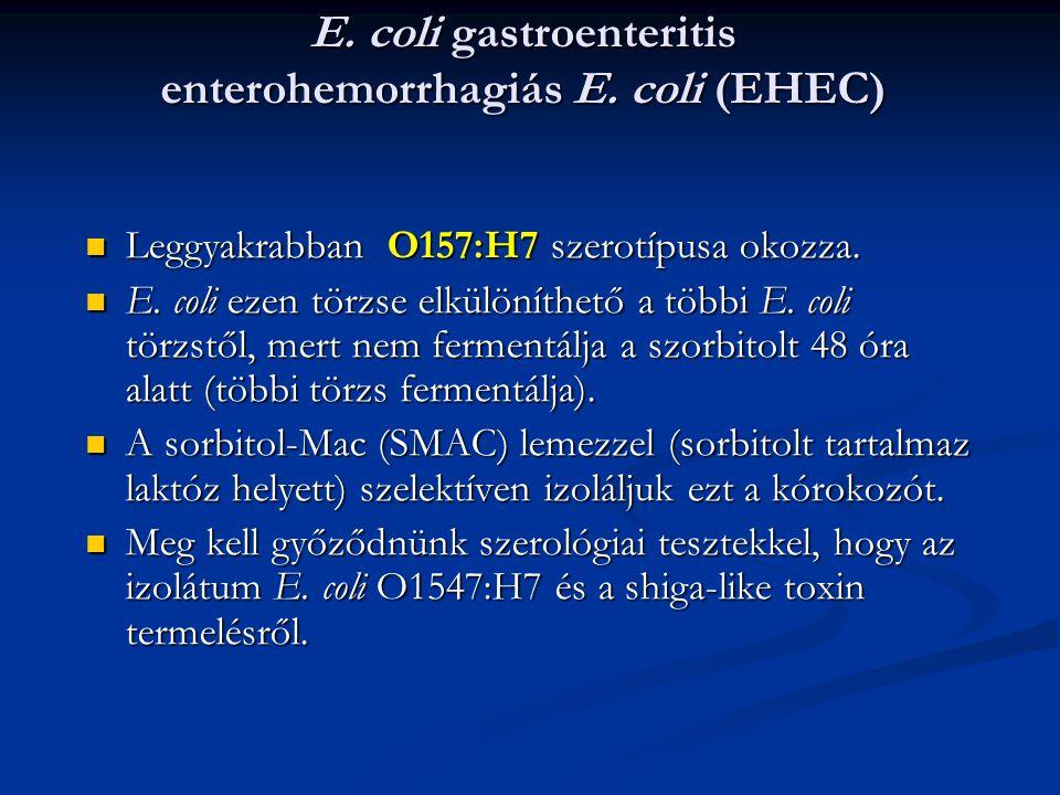 E. coli gastroenteritis enterohemorrhagiás E. coli (EHEC) Leggyakrabban O157:H7 szerotípusa okozza. Leggyakrabban O157:H7 szerotípusa okozza. E. coli