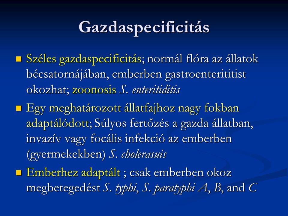 Gazdaspecificitás Széles gazdaspecificitás; normál flóra az állatok bécsatornájában, emberben gastroenterititist okozhat; zoonosis S. enteritiditis Sz