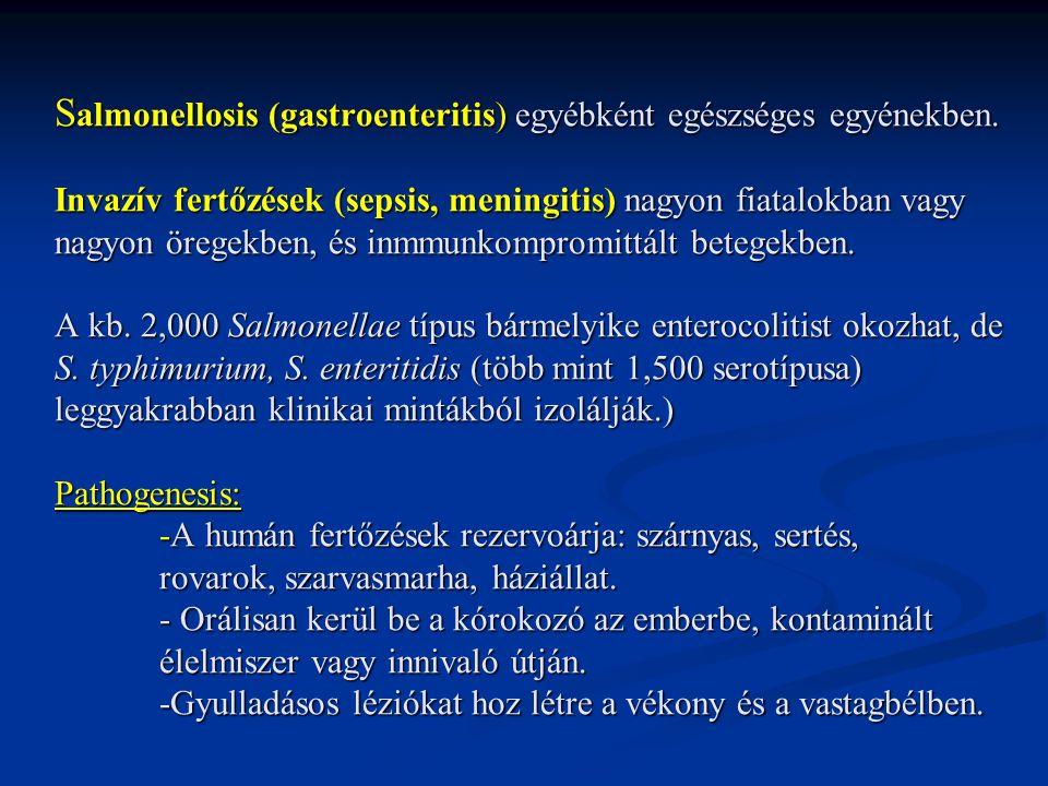 S almonellosis (gastroenteritis) egyébként egészséges egyénekben. Invazív fertőzések (sepsis, meningitis) nagyon fiatalokban vagy nagyon öregekben, és