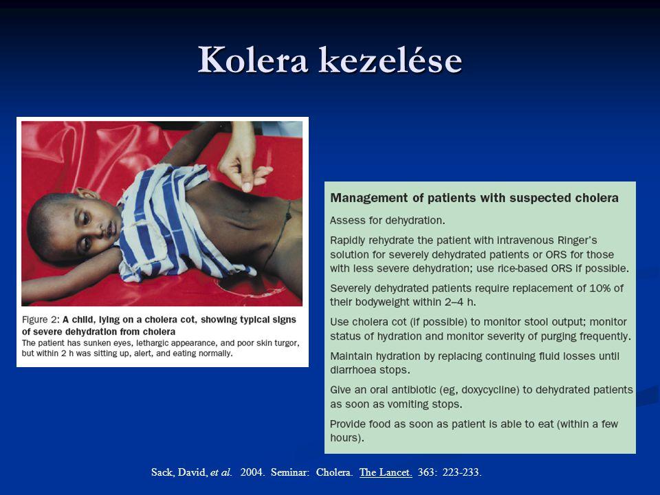 Kolera kezelése Sack, David, et al. 2004. Seminar: Cholera. The Lancet. 363: 223-233.