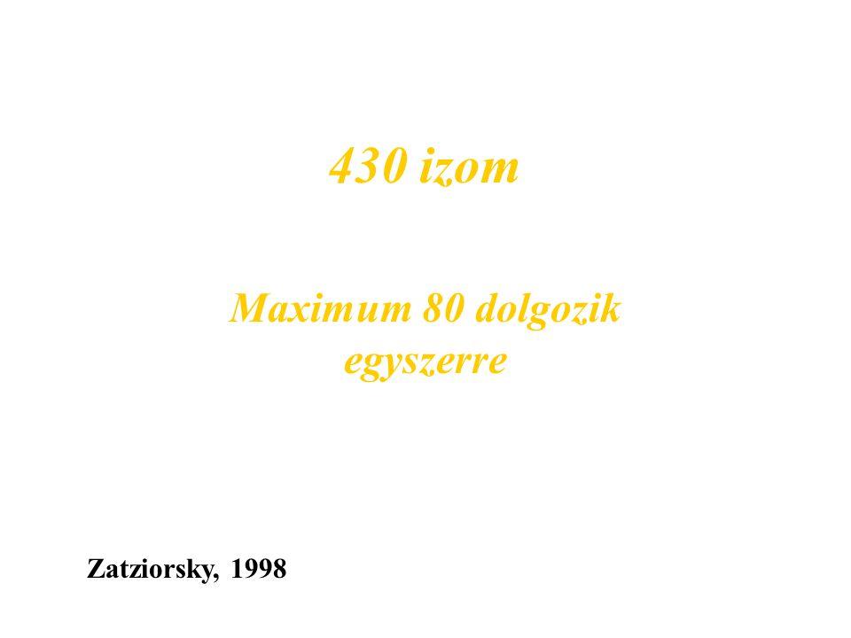 430 izom Zatziorsky, 1998 Maximum 80 dolgozik egyszerre