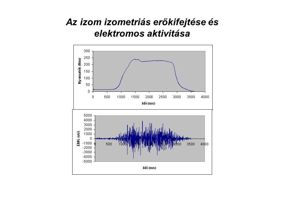 A maximális izometriás erő mindig nagyobb, mint az 1RM Százalékos arány 40 - 85 %