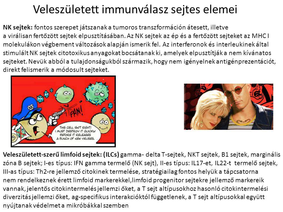NK sejtek: fontos szerepet játszanak a tumoros transzformáción átesett, illetve a virálisan fertőzött sejtek elpusztításában. Az NK sejtek az ép és a