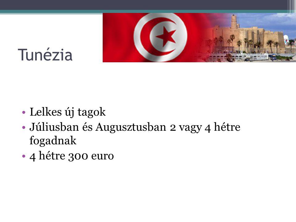 Tunézia Lelkes új tagok Júliusban és Augusztusban 2 vagy 4 hétre fogadnak 4 hétre 300 euro