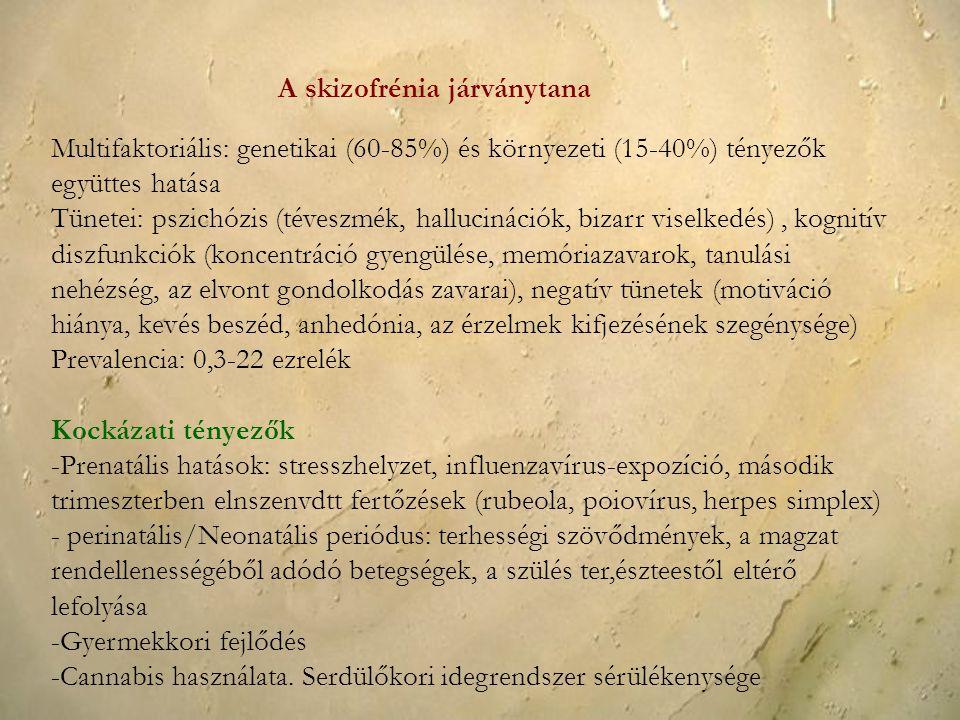 A skizofrénia járványtana Multifaktoriális: genetikai (60-85%) és környezeti (15-40%) tényezők együttes hatása Tünetei: pszichózis (téveszmék, halluci