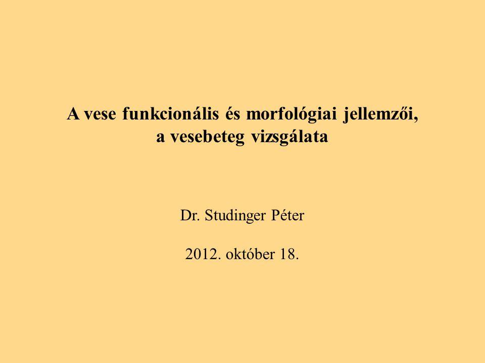 A vese funkcionális és morfológiai jellemzői, a vesebeteg vizsgálata Dr.