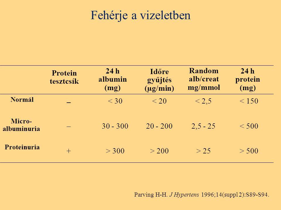 Fehérje a vizeletben Protein tesztcsík 24 h protein (mg) Időre gyűjtés (µg/min) – < 150< 20 Random alb/creat mg/mmol Proteinuria Micro- albuminuria Normál < 2,5 –< 50020 - 2002,5 - 25 +> 500> 200> 25 Parving H-H.