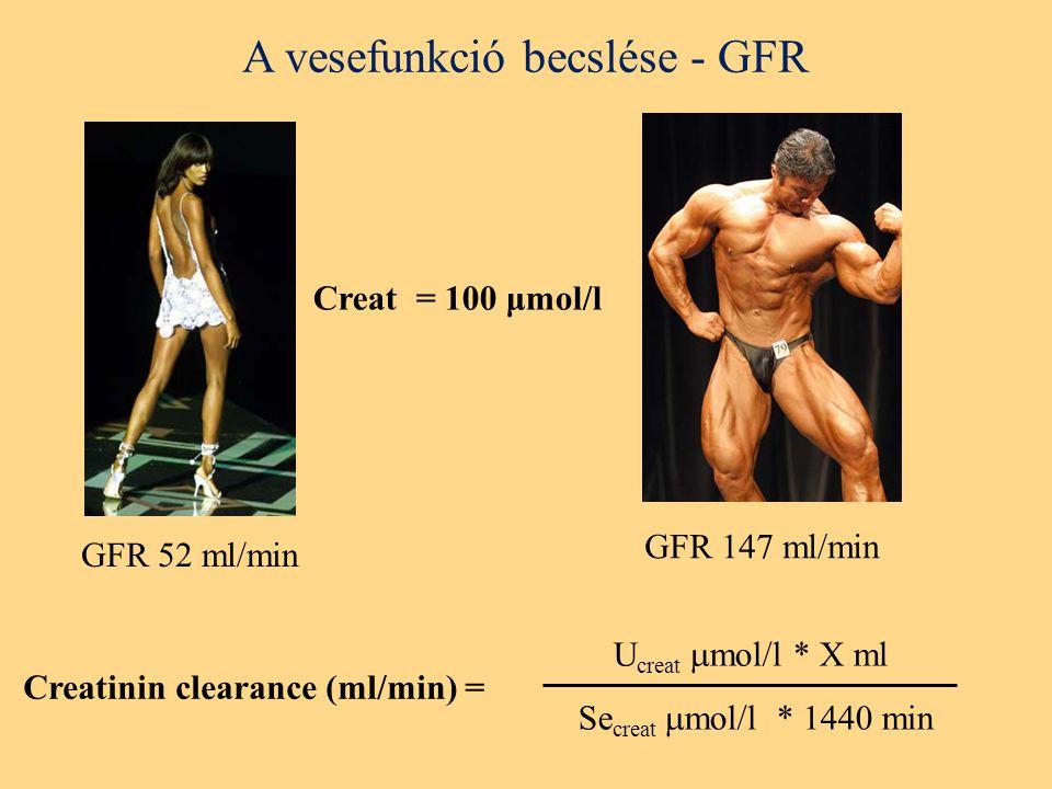A vesefunkció becslése - GFR Creatinin clearance (ml/min) = U creat  mol/l * X ml Se creat  mol/l * 1440 min Creat = 100 μmol/l GFR 52 ml/min GFR 147 ml/min